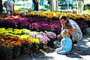 Flora Olomouc Exhibition Grounds